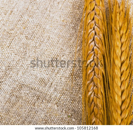 wheat on the on the old mug  background