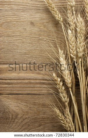 wheat on the wood background - stock photo