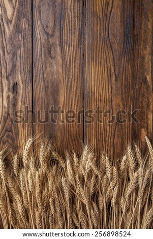 wheat on wooden background. top view - stock photo