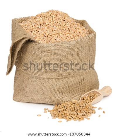 Wheat seeds in a bag isolated on white - stock photo