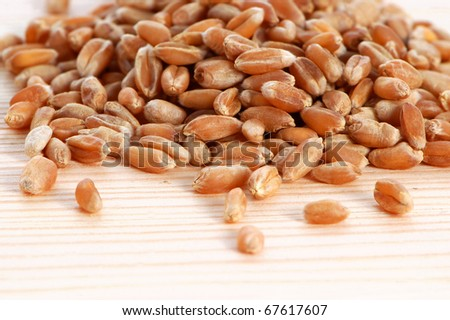 Wheat seeds on a wooden background