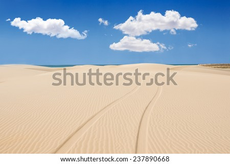 Wheel print in sand dunes of santa monica beach - Praia de Santa Monica in Boavista - Cape Verde - Cabo Verde - stock photo
