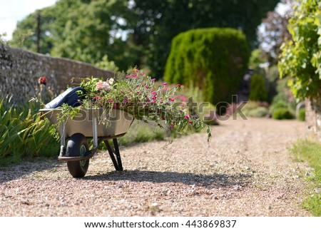 English Country Garden Stock Images Royalty Free Images