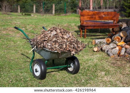 Wheelbarrow full of dry leaf standing in rural backyard - stock photo