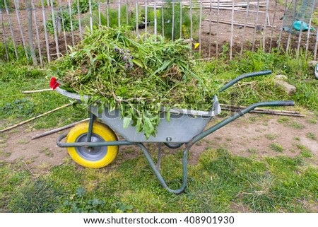 wheelbarrow in a vegetable garden - stock photo