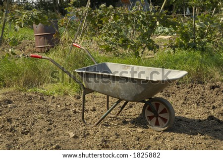 wheelbarrow in allotment, UK.