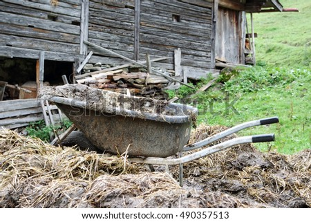 Wheelbarrow on a dunghill