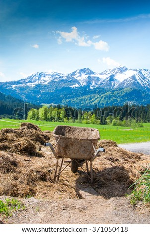 wheelbarrow on a pile of cow dung in austrian alps