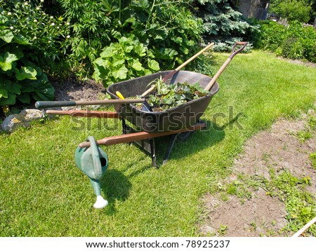 wheelbarrow with bedding plants and garden tools