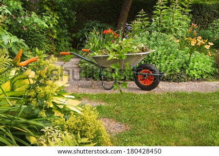 Wheelbarrow with garden-waste in blooming summergarden - stock photo
