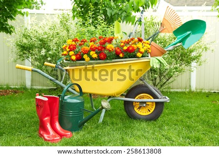 Wheelbarrow with Gardening tools in the garden. - stock photo