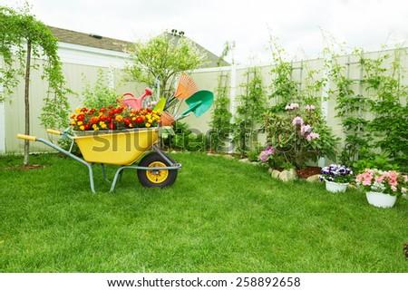Wheelbarrow with Gardening tools in the garden. - stock photo