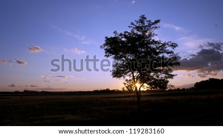 When the sun goes down. Check my portfolio for more amazing nature photos. - stock photo