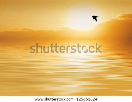 When the sun kisses the water - stock photo