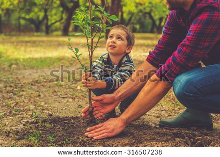 When will it grow? Curious little boy helping his father to plant the tree while working together in the garden - stock photo