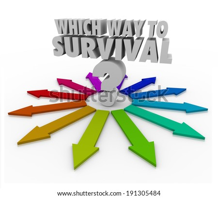 Which Way to Survival Question Arrows Pointing Freedom Safety - stock photo