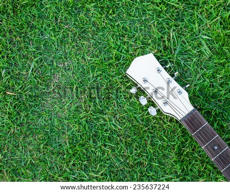 white acoustic guitar lying on meadow
