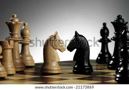 White and black knights on chess board - stock photo