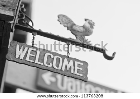 White and Black, welcome signs - stock photo