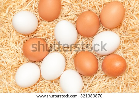 White and brown chicken eggs in a nest; Happy Easter; Bakery ingredient - stock photo