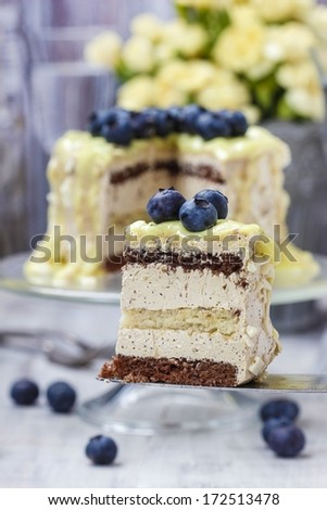White and dark chocolate layer cake decorated with blueberries - stock photo