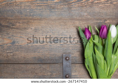 White and lilac tulips on a wooden chest - stock photo