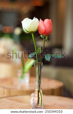 White and red roses with blurred background - stock photo