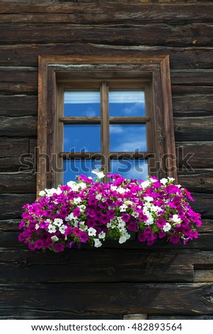White and violet flowers covering window of wooden log cabin