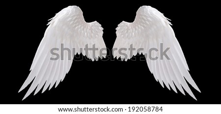Angels Wings Stock Images, Royalty-Free Images & Vectors ...