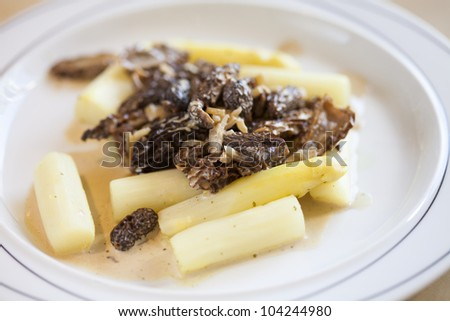 white asparagus with morels and cream sauce - stock photo