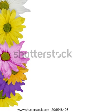 White background bordered by colorful daisy's - stock photo