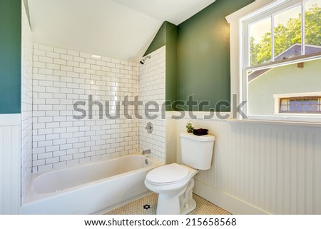 White bathroom interior with green walls with siding and tile wall trim - stock photo