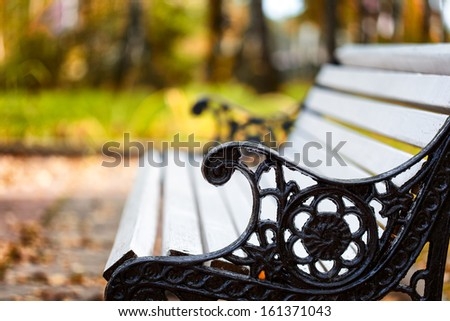 White bench in the autumn park. Close-up