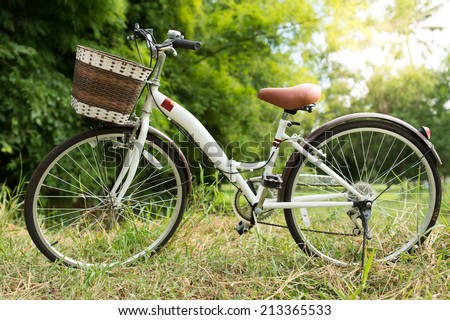 white bicycle in green garden
