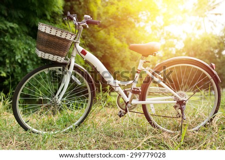 white bicycle in green garden : vintage filter