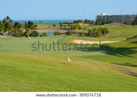 White Bird on a Golf Field Next to a Hole with a Flag with Green Palm Trees, A Lake, Ocean Sea and a Modern Light Building in the Background in Vietnam, Asia Pacific