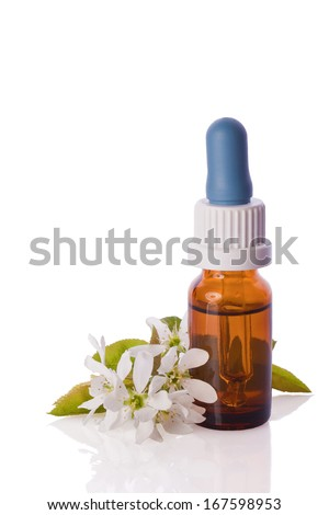 white blossom homeopathic therapy  essence