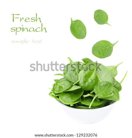 white bowl with fresh spinach and falling leaves isolated on a white background