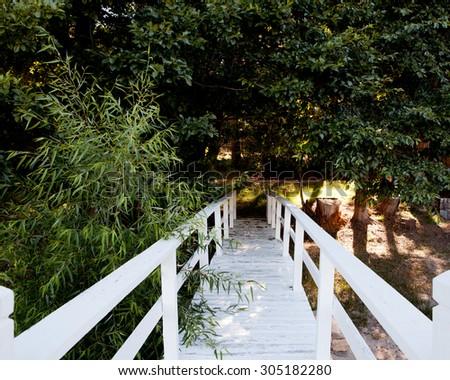 white bridge to a walking path in the trees - stock photo