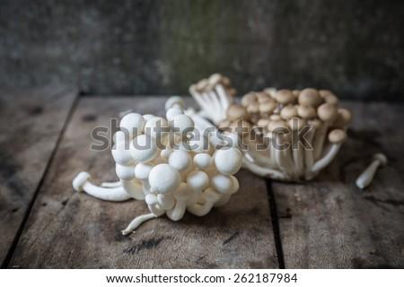 White Brown beech mushrooms, Shimeji mushroom, Edible mushroom - stock photo