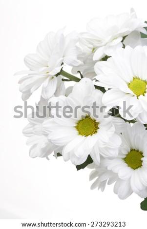 White bunch flowers stock photo royalty free 273293213 shutterstock white bunch of flowers mightylinksfo