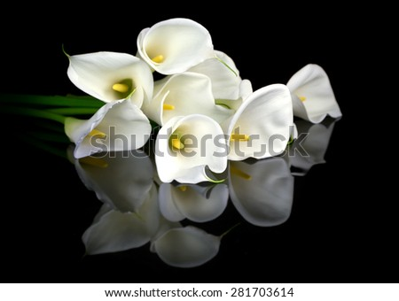 White calla bouquet on black background