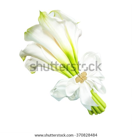 White calla lilies, isolated on white. Buds and full-bloom, in soft focus. - stock photo