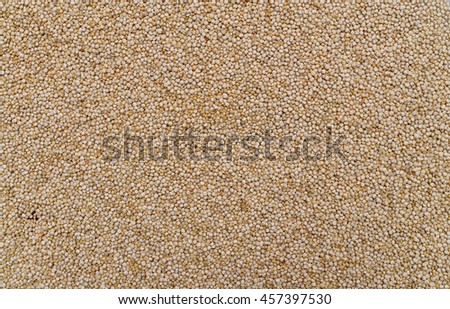 white chia plant dry seeds texture pattern