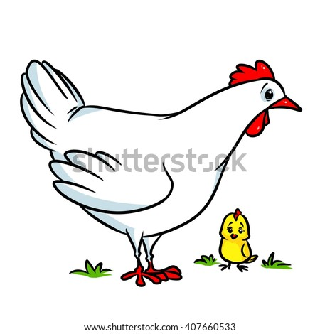 White chicken cartoon illustration isolated image animal character