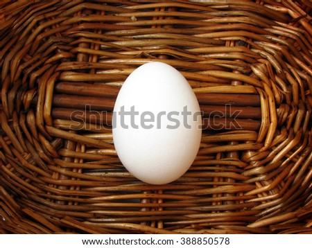 white chicken eggs in the brown basket . at the bottom of the basket is a lonely egg. - stock photo