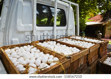 White chicken eggs in wooden box - selective focus - stock photo