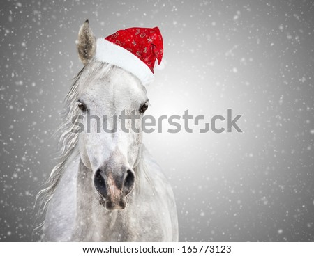 Christmas horse stock images royalty free images vectors white christmas horse with santa hat on gray background snowfall voltagebd Image collections