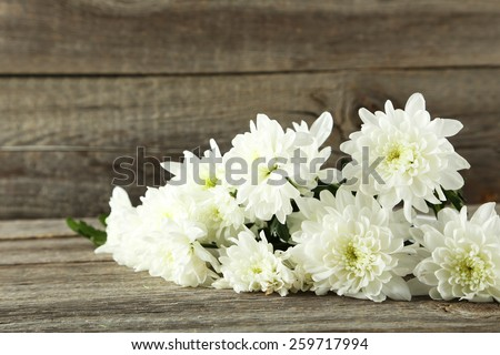 White chrysanthemum flowers on grey wooden background