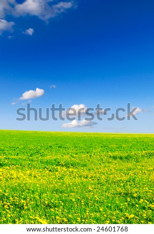 white clouds and spring fields